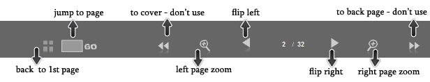 How to Use Flip Flash Control